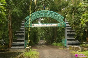 Welcome to Alas Purwo resize 300x200 Explore Alas Purwo National Park 2D1N