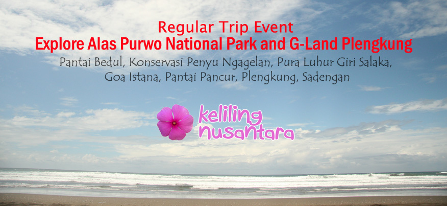 Banner Alas Purwo G Land Plengkung Explore Alas Purwo National Park and G Land Plengkung