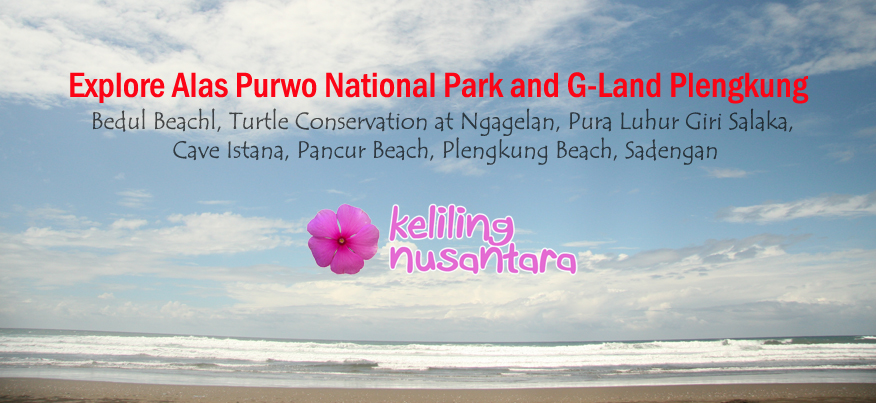 Explore Alas Purwo and Plengkung Explore Alas Purwo National Park and Plengkung Beach 4D3N
