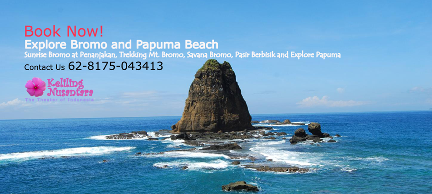 Explore Bromo Papuma Explore Bromo and Papuma Beach 3D2N