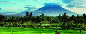 Ubud Bali 300x120 Ubud Bali