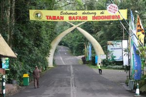 Taman Safari Indonesia 2 Pasuruan 300x200 Destinasi Pariwisata sekitar Surabaya   Jawa Timur