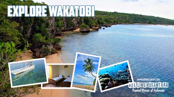 Explore Wakatobi Jelajah Wakatobi   Diving and Snorkeling 15 19 Oktober 2015