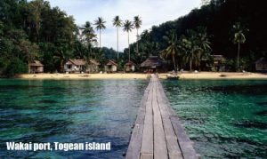 Wakai port Togean island 300x179 Explore Togean 8D7N
