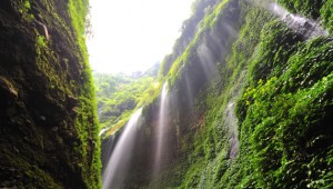 Air terjun madakaripura 300x170 Surabaya City Tour & Explore Mt. Bromo and Madakaripura waterfall start from Jakarta