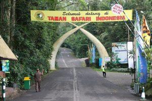 Taman Safari Indonesia 2 Pasuruan 300x200 Tourism Destinations around Surabaya   East Java