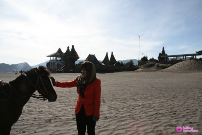 Pure Poten Bromo 400x267 Welcome