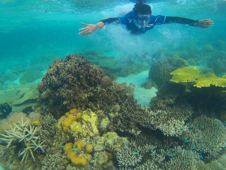Snorkelling di Pulau Pari