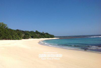 Pantai Pasir Gotri Taman Nasional Alas Purwo 400x267 Welcome