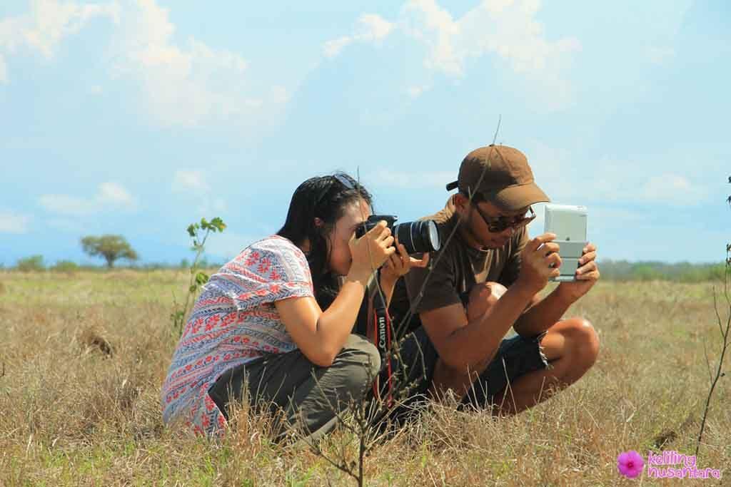 capturing wild animals activities in baluran national park