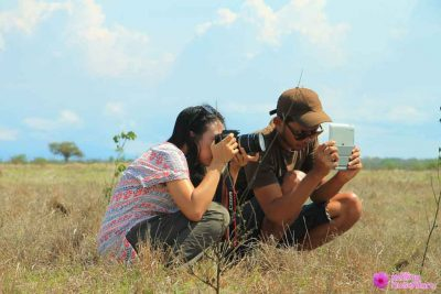 capturing wild animals activities in baluran national park 400x267 Welcome