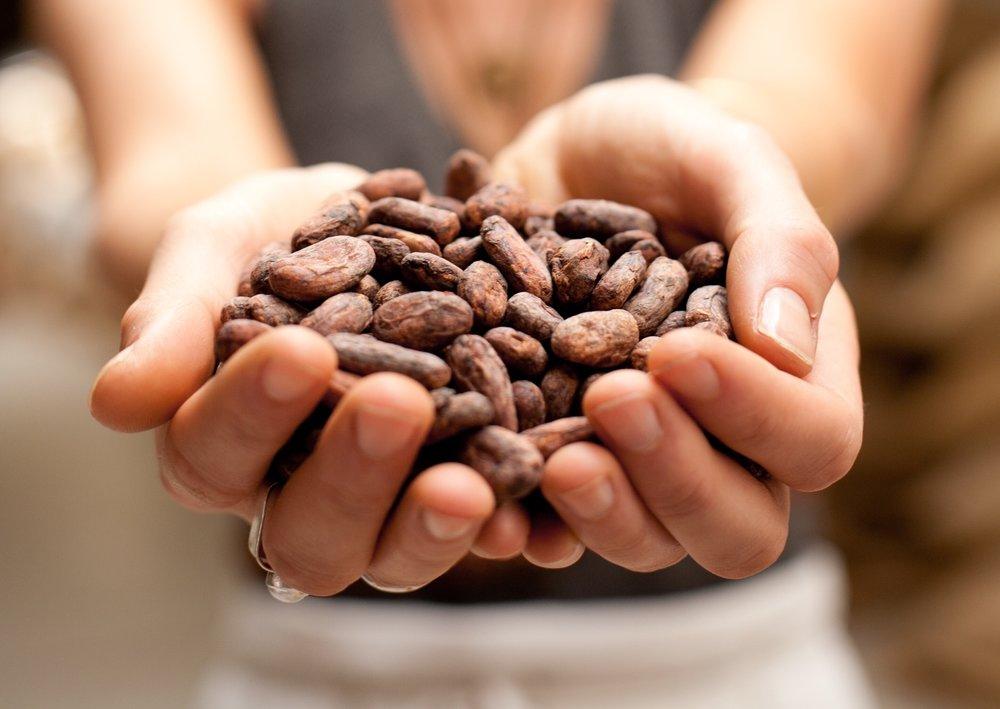 Kakao of Banyuwangi