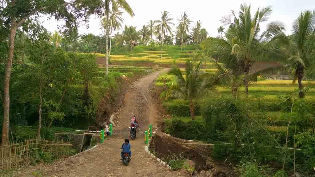 A road to Tetebatu village