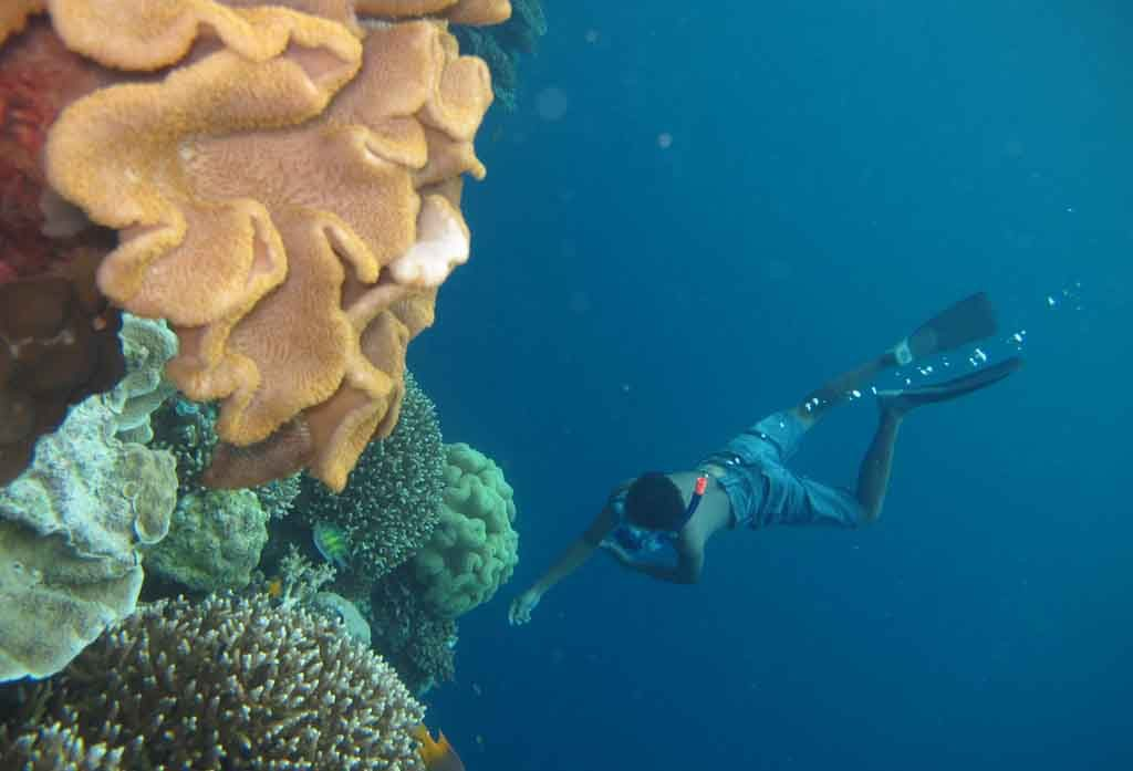 Freediving at Tomia Wakatobi 1024x697 Diving In Indonesia is The Capital Diving Centre of the World