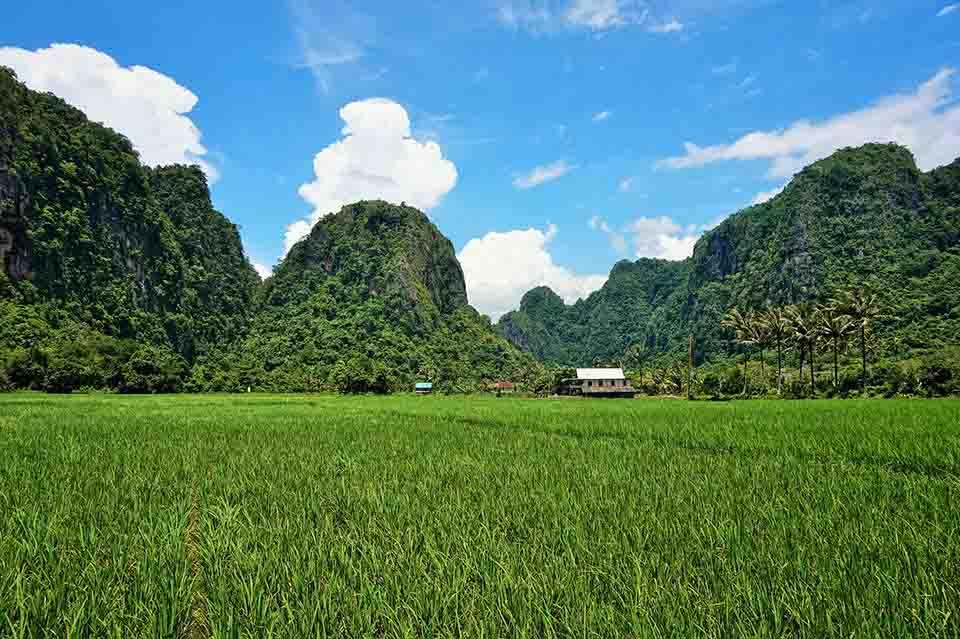 Lahan pertanian hijau di Ramang-Ramang