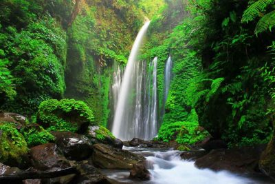 Tiu Kelep waterfall - Senaru